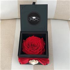 Single Deluxe Grande rose Proposal Red